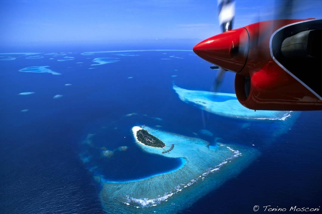 Maldive tmosconi 991101