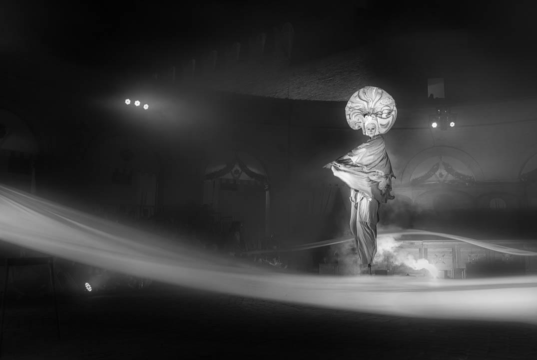 Palio, Daino by Tonino Mosconi Fotografo, fineart photography, editoria, pubblicazioni, servizi fotografici turismo